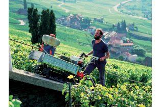 Transporteur à chenille Honda HP500 H vigneron