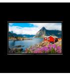 """Ecran LED 86"""" 4K natif VESTEL PDU86S30B garanti 3ans sur site - Face"""